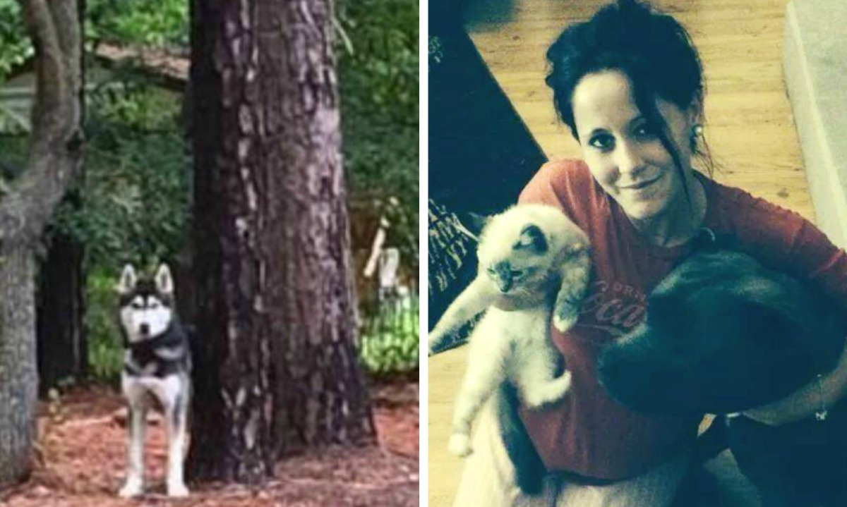 Exclusive! Animal Control Called on Jenelle Evans & Nathan Griffith Shortly Before HuskyDisappears!